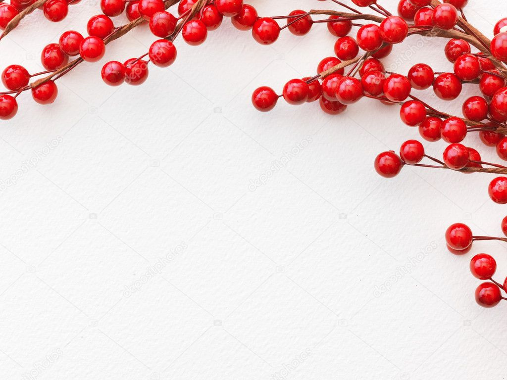 Christmas Berries on the paper — Stock Photo #5134970