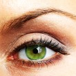 Beautiful Eye of Woman — Foto Stock