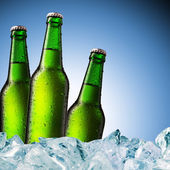Beer Bottle with water drops on the white — Stock Photo