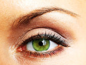 Beautiful Eye of Woman — Stock Photo