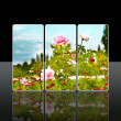 Reflection roses — Stock Photo