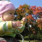 Baby in autumn. sun — Stock Photo