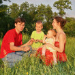 Family of four on meadow 2 — Stock Photo