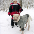 Boy with dog in winter park - Stock Photo