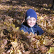 Boy in maple autumn leaves — Stock Photo #3539716