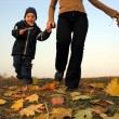 Running kid with half mother. autumn leaves — Stock Photo #3539721