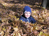 Boy in maple autumn leaves — Stock Photo