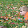 Autumn child — Stock Photo #3540045