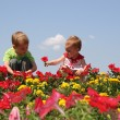 Baby and child in flowers — Стоковое фото