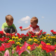 Baby and child in flowers — Stock Photo #3540450