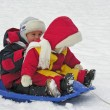 Children on sled — Stock Photo #3541391