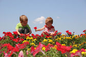 Baby and child in flowers — Stock Photo