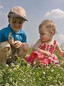 Children on meadow 2 — Stock Photo