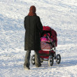 Stock Photo: Mother with baby carriage. winter