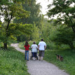 Behind walking family in park — Stock Photo