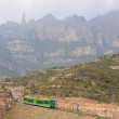 Stock Photo: Mount train