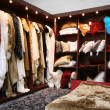Stock Photo: Fur closet