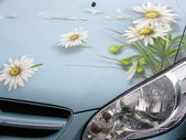 Car with draw flowers — Stock Photo