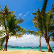 Stock Photo: Tropical Paradise