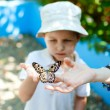 Kid with butterfly - Stock Photo