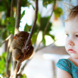 girl and tarsier — Stock Photo