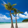 Tropical Paradise — Stock Photo #3645338