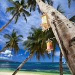 Beach detail — Stock Photo