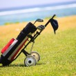 Golf bag on coastal field - Stock Photo