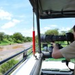 ������, ������: Safari vacation