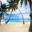 Perfect tropical beach with palm trees - Stock Photo