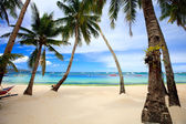 Perfect tropical beach with palm trees — Photo