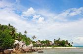 Exotic coast landscape — Stock Photo