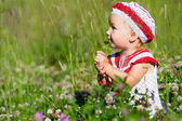 Portrait of toddler girl in meadow — Stock Photo