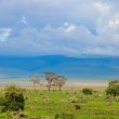 Landscape of Ngorongoro crater in Tanzania — Stock Photo #3855387