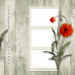 Wooden background with frame and poppy — Stock Photo