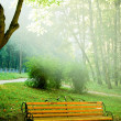 Bench in morning park — Stock Photo #3431947