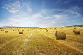 Straw bales on farmland — Stock Photo