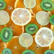 Kiwi, lime, lemon, orange — Stock Photo