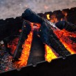 Firewood in brazier — Stock Photo