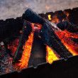 Stock Photo: Firewood in brazier