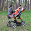 Pram in the forest — Stock Photo
