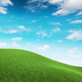 Grass on hilly meadow — Stock Photo