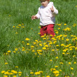 Child on the green meadow — Stok fotoğraf