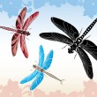 Stock Vector: Dragonfly stencil vector illustration