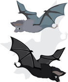 Bat in two variants, cartoon — Stock Vector
