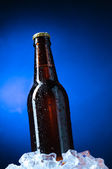 Beer — Stock Photo
