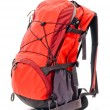 Red backpack - Stok fotoğraf