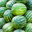 Group of fresh ripe watermelons - Stock Photo
