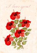 Vintage wenskaart met hibiscuses — Stockvector