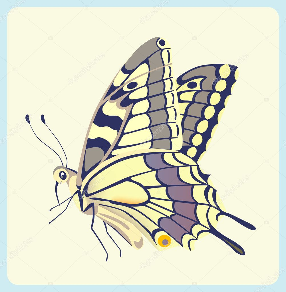 Eastern Tiger Swallowtail butterfly — Stock Vector #2991819